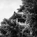 Good bye pagoda