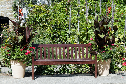 Bench and canna potted plants Quex House Birchington Kent England