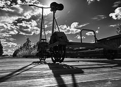 2020-07-02 18.22.23 - Dromo, Hvad som helst, Dag 184-366, Randers Fjord Feriecenter, Uggelhuse, Randers - _07020002 - ©Anders Gisle Larsson
