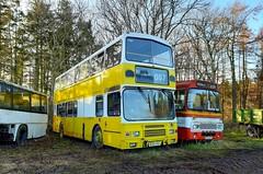 Photo of Ex Lothian Buses M202VSX