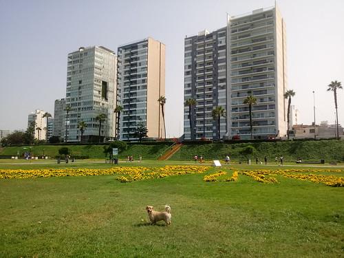 Lima - Parque María Reiche