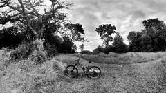 Photo of 2020 07 03 bike 062 01a
