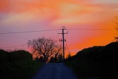 Photo of Autumn Sunset