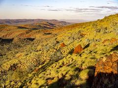 Pilbara_Mount Sheila_DSF0666