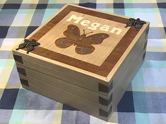 Photo of Megan's butterfly jewellery box