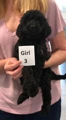 Ella Girl 3 pic 2 7-5