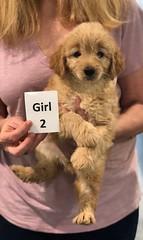 Ella Girl 2 pic 2 7-5