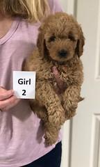 Sabrina Girl 2 pic 2 7-5