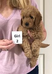 Sabrina Girl 2 pic 3 7-5