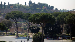 View of the Forum and Palatine Hill