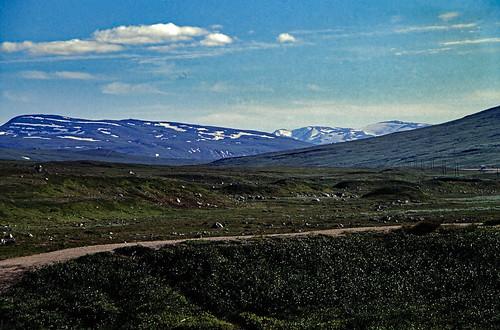 "Norwegen 1998 (618) Saltfjellet • <a style=""font-size:0.8em;"" href=""http://www.flickr.com/photos/69570948@N04/50081182403/"" target=""_blank"">View on Flickr</a>"
