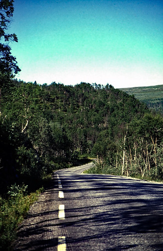 "Norwegen 1998 (614) Røvassdalen • <a style=""font-size:0.8em;"" href=""http://www.flickr.com/photos/69570948@N04/50081767801/"" target=""_blank"">View on Flickr</a>"