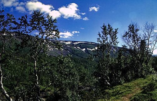 "Norwegen 1998 (615) Røvassdalen • <a style=""font-size:0.8em;"" href=""http://www.flickr.com/photos/69570948@N04/50081769316/"" target=""_blank"">View on Flickr</a>"