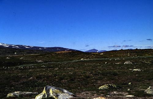 "Norwegen 1998 (616) Saltfjellet • <a style=""font-size:0.8em;"" href=""http://www.flickr.com/photos/69570948@N04/50082011907/"" target=""_blank"">View on Flickr</a>"