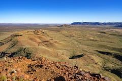 Mount Bruce_Pilbara_DSC4496