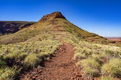 Mount Bruce_Pilbara_DSC4554