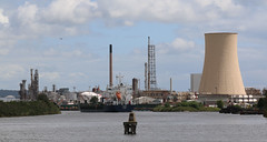 Photo of 5th July 2020. Afternoon Constitutional. Telmo on the Manchester Ship Canal at Stanlow Oil Refinery, Ellesmere Port,  Cheshire.