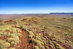 Mount Bruce_Pilbara_DSC4548