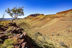 Mount Bruce_Pilbara_DSC4558