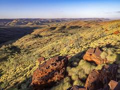 Afternoon sun at Mount Sheila_Pilbara_DSF0650