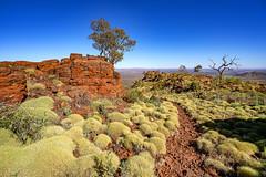 Mount Bruce_Pilbara_DSC4543