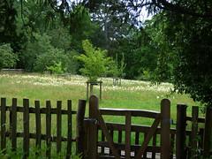 Photo of Wildflower Meadow at Baddesley Clinton - gate