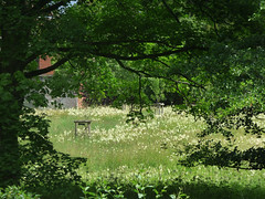 Photo of Wildflower Meadow at Baddesley Clinton from The Great Pool