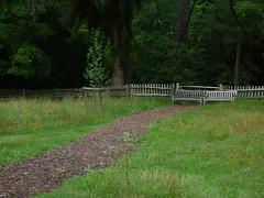 Photo of Wildflower Meadow at Baddesley Clinton - path