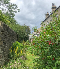 Photo of Flowery ginnel