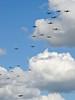 Flying Legends 2007 Balbo