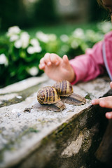 Young girl playing with two snails in the garden, focused close-up
