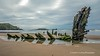 Hi-res the wreck of the Helvetia at Rhossili 2020 07 07 #1