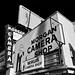 morgan camera shop. hollywood, ca.  2015.