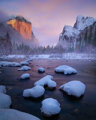 Yosemite treasure (Explored)