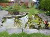 My garden pond in Willen 07Jul20