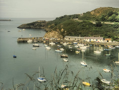 Photo of Hill Terrace (A.487) view of part of Fishguard Harbour.