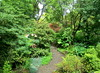 pathway , Branklyn Garden, Perth, Scotland