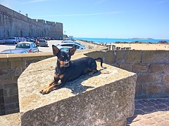Max se repose sur les remparts de saint MALO
