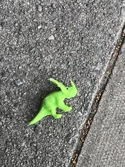 Photo of Found: Dinosaur