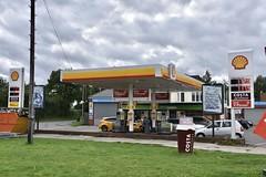 Photo of Shell, Needwood Staffordshire.