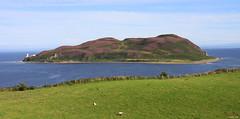 Photo of Davaar island