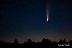Comète C/2020 F3 (NEOWISE)