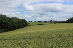 Photo of Country West of Sherburn