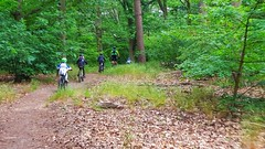 Biking Kids Mountain Biking im Grunewald Ausfahrten und Trainings