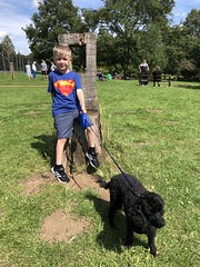 Photo of Fintan and Lucy at Cutteslowe Park, Oxford - July 2020