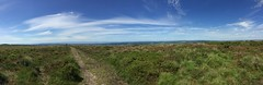 Photo of Mendips on a glorious day