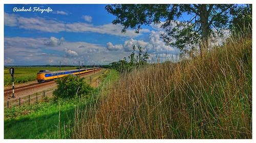 Nederlandse Spoorwegen 4046+4012+4032 ( ICMm,Koploper) Lelystad-Oostvaardersplassen ( NL)