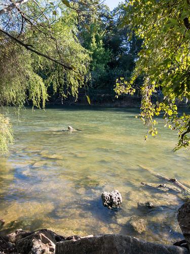 Barton Creek, Austin, Texas