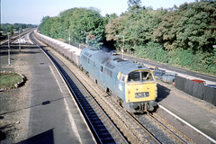 Photo of 26Sep75. Taplow. 'Western' D1058 WESTERN NOBLEMAN. [Slide_A045]