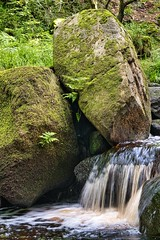 Photo of In padley gorge